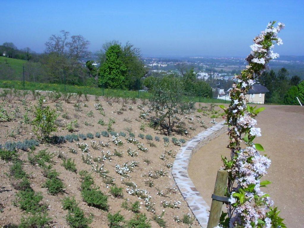 Planter Dans Un Talus plantation et enrochement - paysage floreal